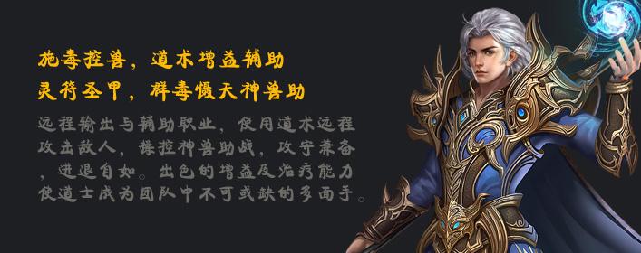 霸王之心道士职业介绍